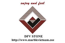 logo dfv stone